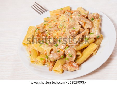 pasta rigatoni with meat and sauce - stock photo