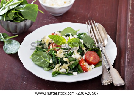 Pasta salad with orzo, spinach, tomato and feta - stock photo