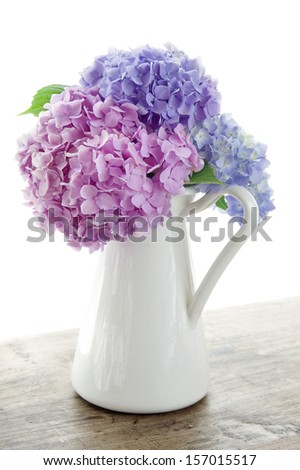 Pastel color hydrangea flowers on wooden table and white background - stock photo