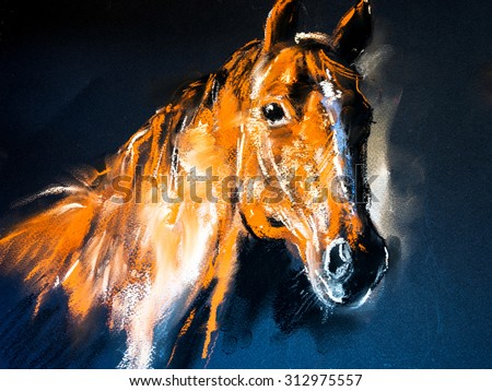 Pastel portrait of a brown horse on a cardboard. Modern art - stock photo