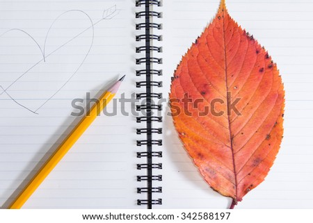 Pastel yellow with red leaves on a book of love. - stock photo