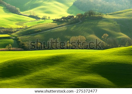 Pastoral green field with long shadows in Tuscany, Italy - stock photo