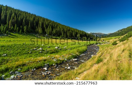 Pastoral summer scenery in the Alps - stock photo
