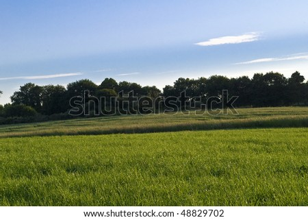 pasture in spring - stock photo