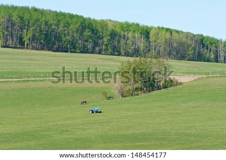 Pasture on a hillside in spring.  A horse grazing and a small tractor in the field - stock photo