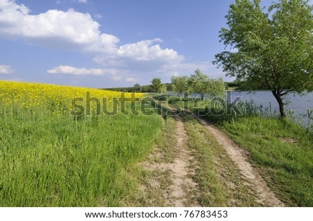 Path along the lake - stock photo