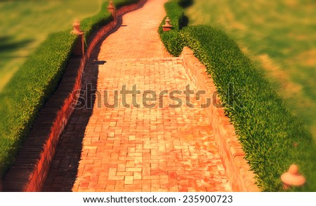 path in garden - stock photo