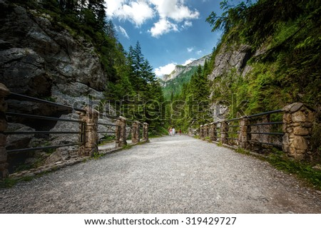 Path in Tatra Mountains National Park in Poland - stock photo