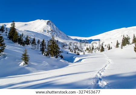 Path in the snow to the mountain. Trees. Long shadows. Clear sky, sunny. Winter. Ukraine - stock photo
