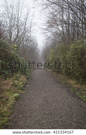 path in winter forest on misty morning - stock photo