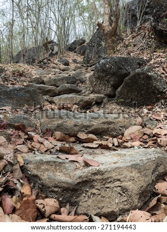 Path Leading Through Ancient Forest - Ob Luang National Park, Thailand - stock photo