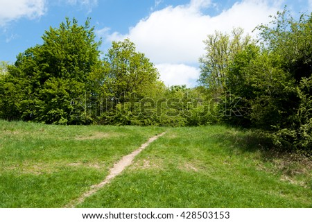 Path leading through spring park on a sunny day. - stock photo