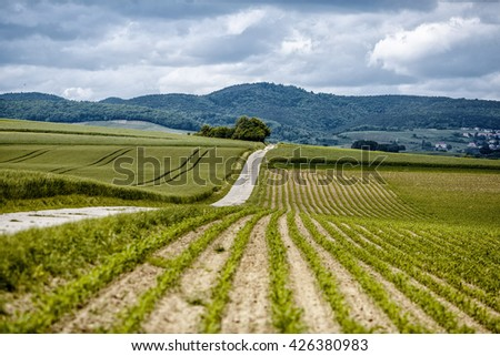Path leading through the farm fields in Rhineland Palatinate in Spring - stock photo