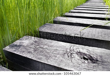 Path made of wood over water in a field - stock photo