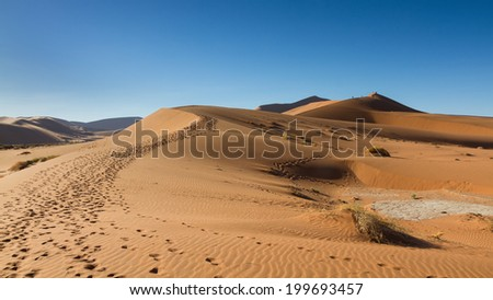 Path on the sand dune, Sossusvlei, Namibia - stock photo