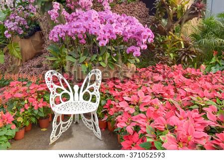 Path through flower Garden - stock photo