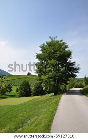 Path through the summer landscape - stock photo