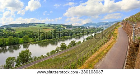 path through vineyards and view to mosel river, saarland germany - stock photo