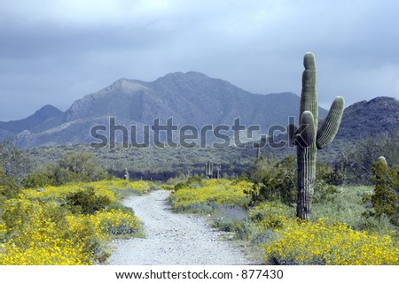 path to happiness - stock photo