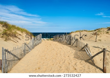 Path way to the beach at Cape Cod, Massachusetts, USA.  - stock photo
