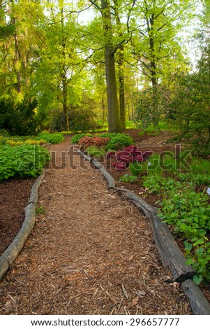 Pathway in beautiful forest in botanical Garden - stock photo