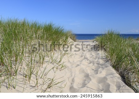 Pathway Over Dunes to Beach on Sunny Day - stock photo
