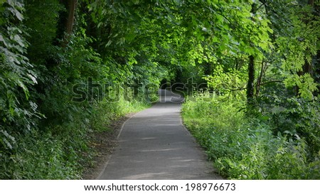 Pathway through a Peaceful Woodland Park - stock photo