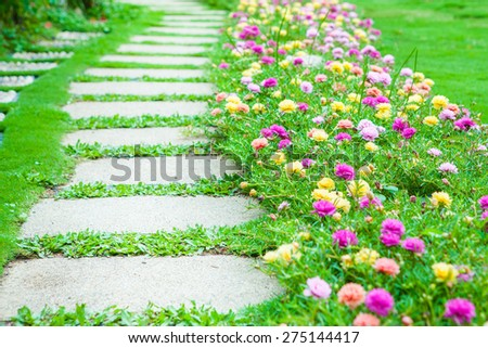 pathway with gardening blooms - stock photo