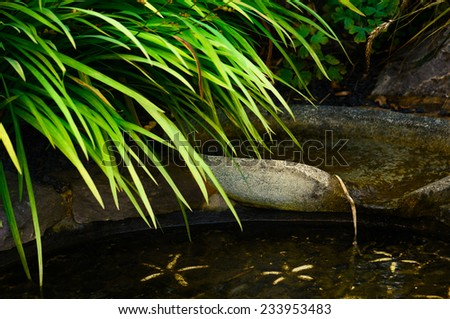Patio Outdoor pond with flowing water - stock photo