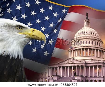 Patriotic Symbols of the United States of America - stock photo