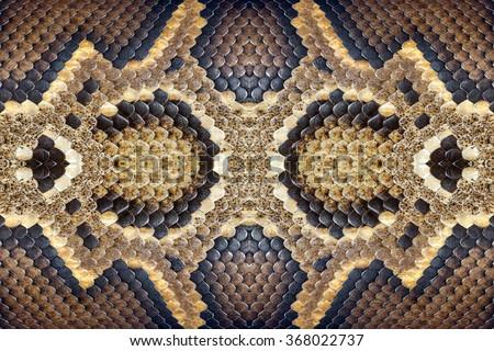 Pattern of python skin. - stock photo
