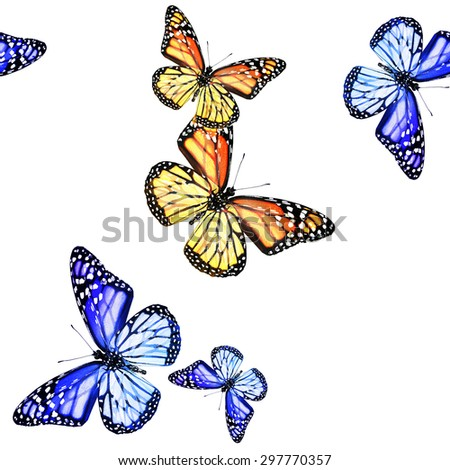 Pattern with flying butterflies - stock photo
