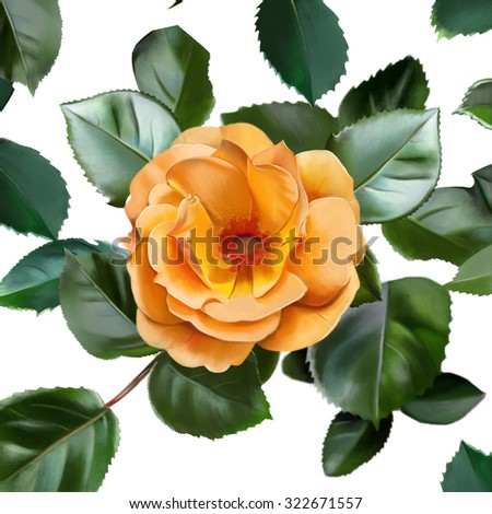 pattern with yellow rose, with petals, on a white background, watercolor illustration  - stock photo