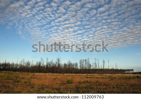 patterned clouds over field - stock photo