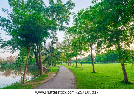 Paved path curving through the park. Peaceful pathway curves through a green grassy field in  park. - stock photo