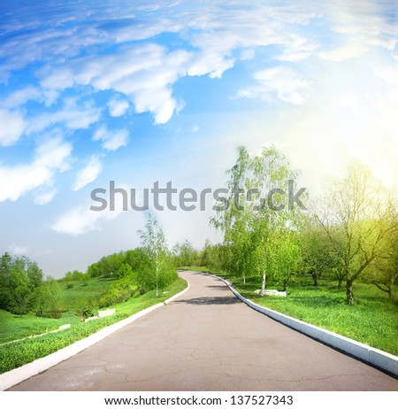 Paved road in a green park in the afternoon - stock photo