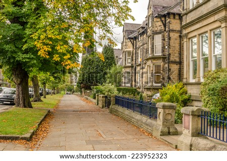 Pavement Lined with Trees and Old Houses on a Cloudy Autumn Day - stock photo