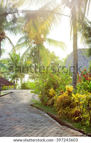 pavement road in sunny tropical park with palm trees and flowers - stock photo
