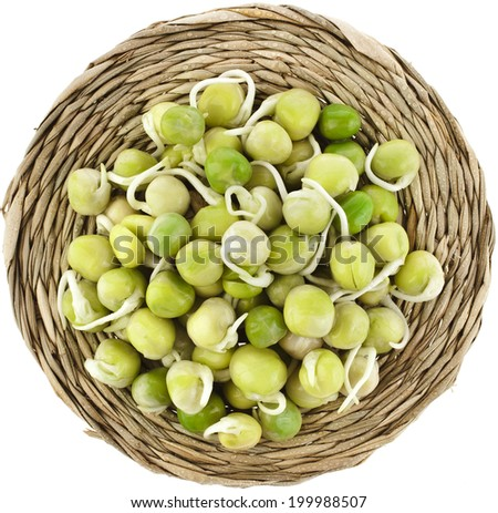 Pea seeds with sprouts close up macro shot top view isolated on a white background - stock photo