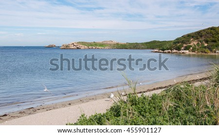 Peaceful beach with coastal dunes and Indian Ocean waters at Penguin Island in Rockingham, Western Australia/Remote Penguin Island Beach/Rockingham, Western Australia. - stock photo