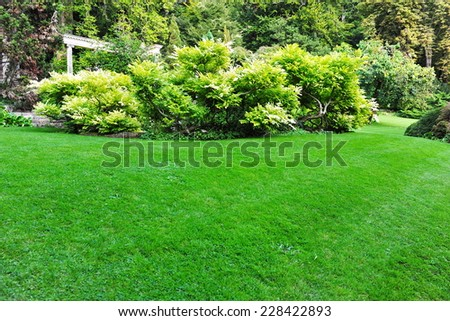Peaceful Garden Lawn Background - stock photo