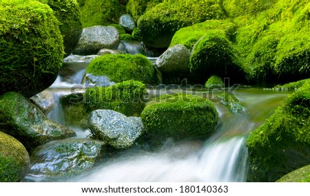 Peaceful Natural Stream, New Zealand - stock photo