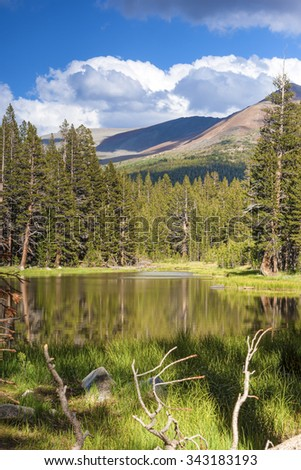 Peaceful Scenery of the World Famous Yosemite National Park in California, United States Of America. Vertical Shot. HDR Image - stock photo
