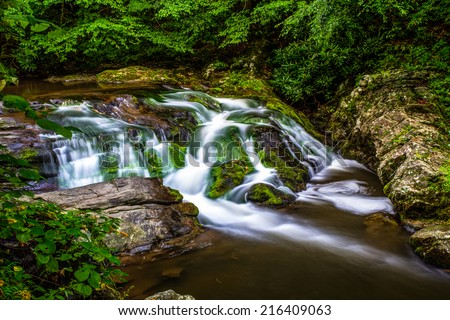 Peaceful Smoky Mountain stream along the Roaring Fork Motor Nature Trail. Great Smoky Mountains National Park. Gatlinburg, Tennessee.  - stock photo