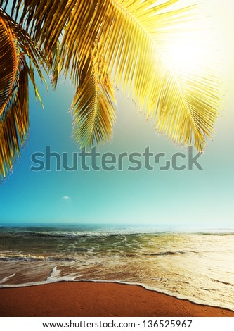 Peaceful tropical beach at dusk - stock photo