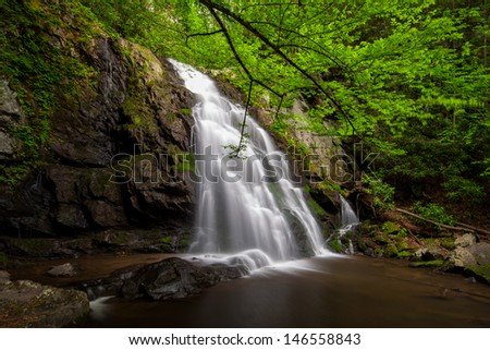 Peaceful waterfall with green lush blanket of green leaves  - stock photo