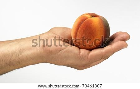 peach on palm - stock photo