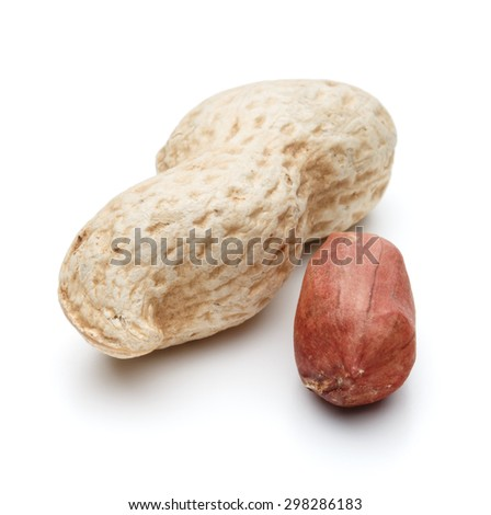 peanut pod or arachis isolated on white background cutout - stock photo