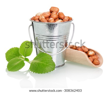 Peanuts in a bucket and wooden scoop on a white background - stock photo