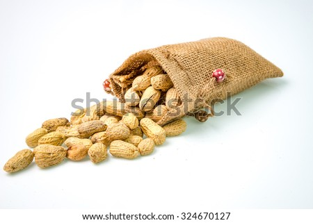 peanuts in a miniature burlap bag on white Background